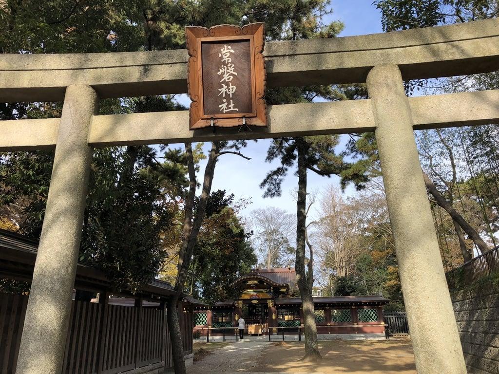 常磐神社の鳥居