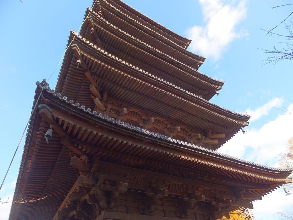 東寺(教王護国寺)の塔
