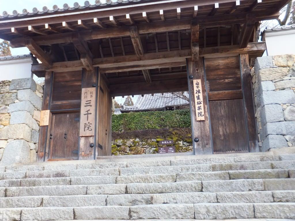 三千院門跡の山門