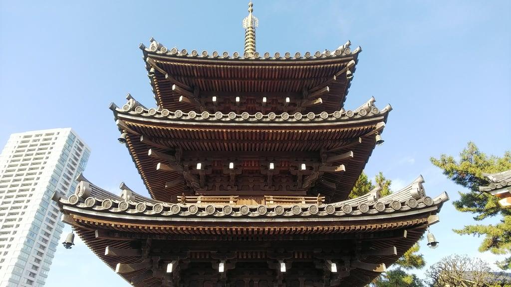 本光寺の塔