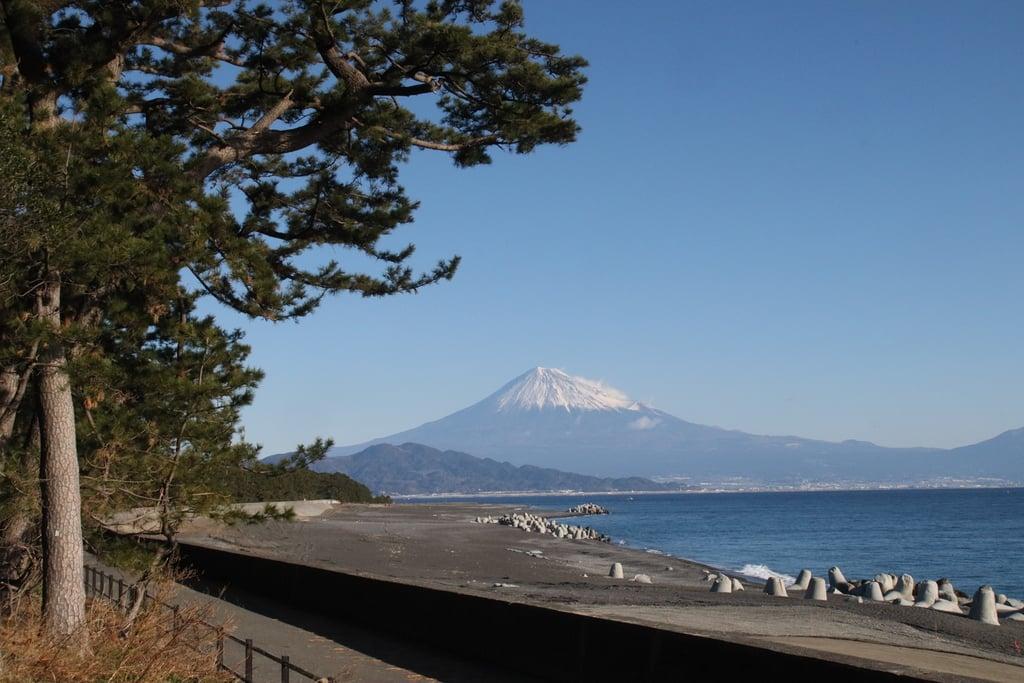 御穂神社の景色