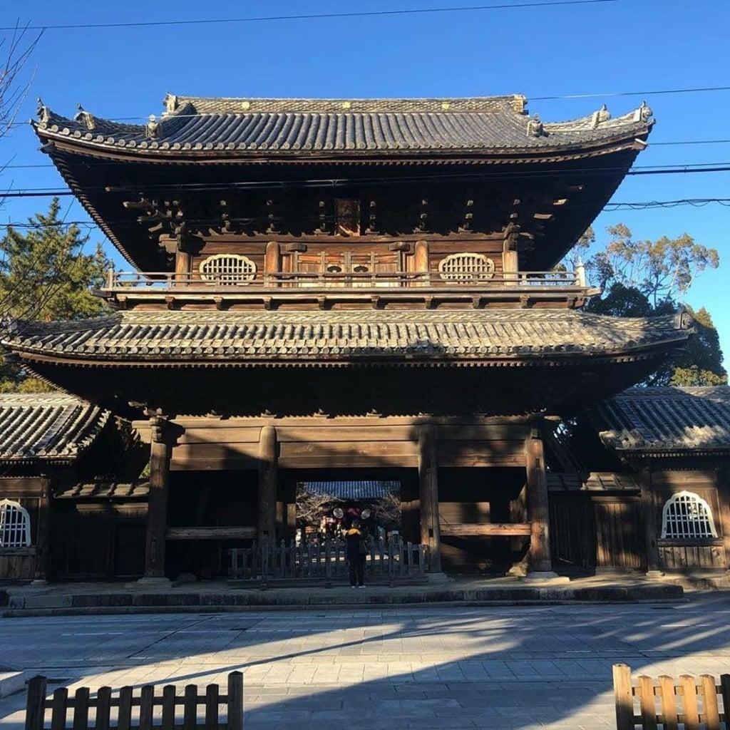 大樹寺の山門