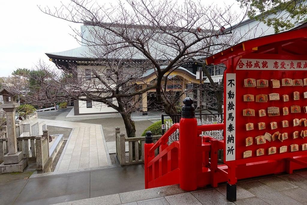 成田山大阪別院明王院の絵馬