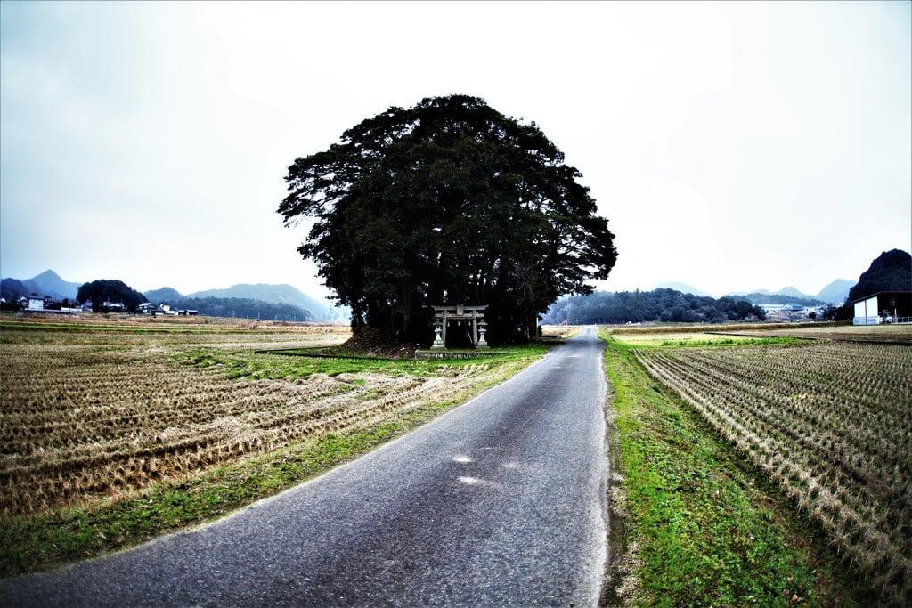 小原神社の周辺(鳥取県米子駅)