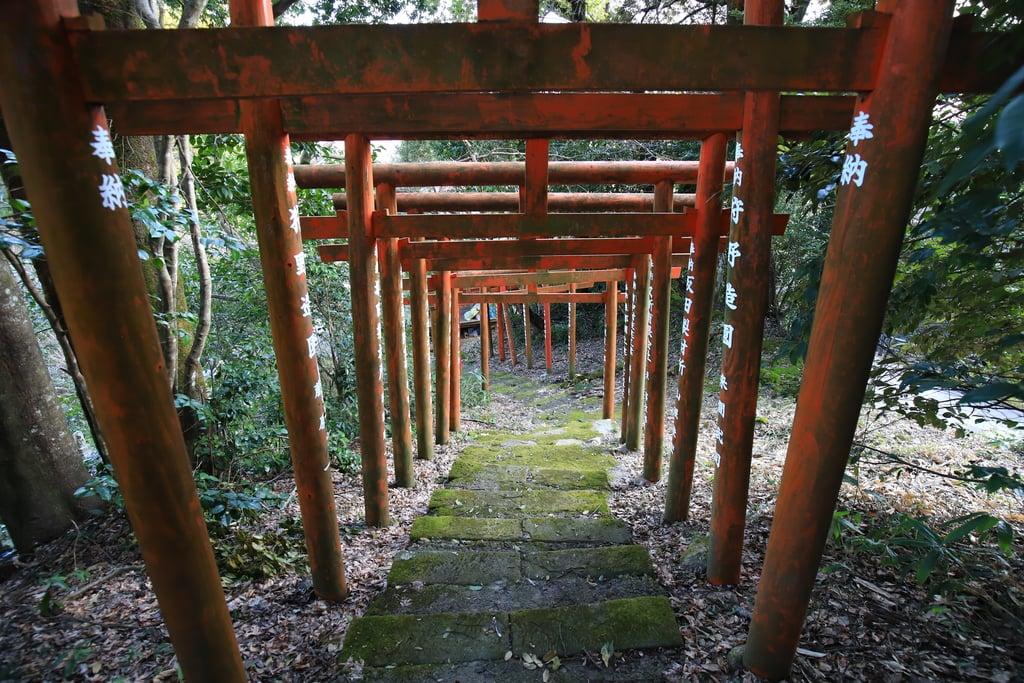 峯寺の鳥居
