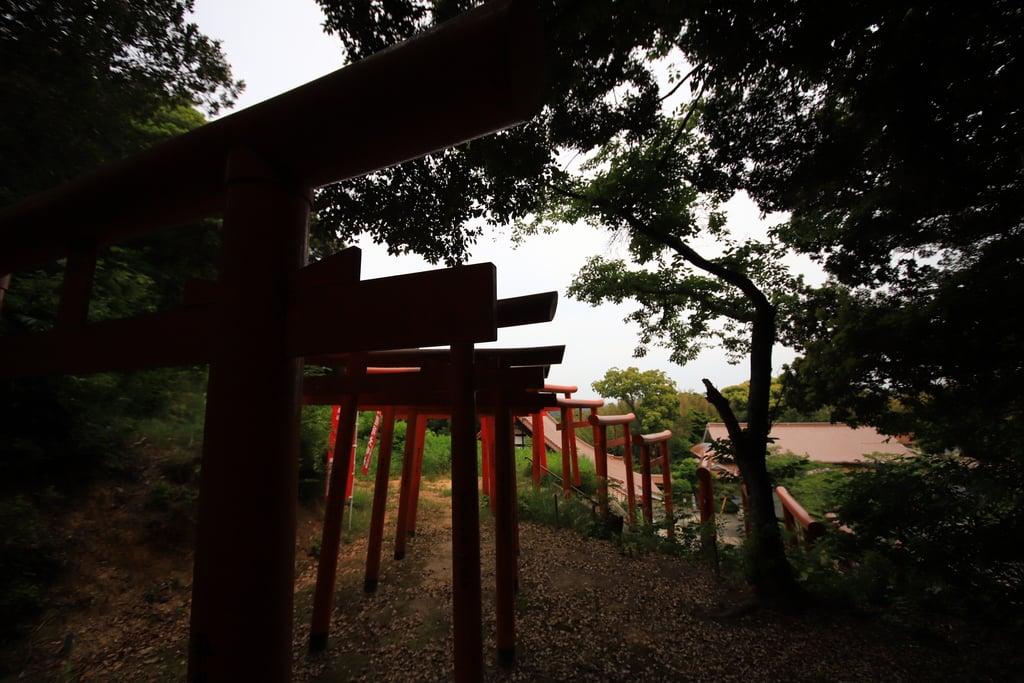 多陀寺の鳥居(島根県下府駅)