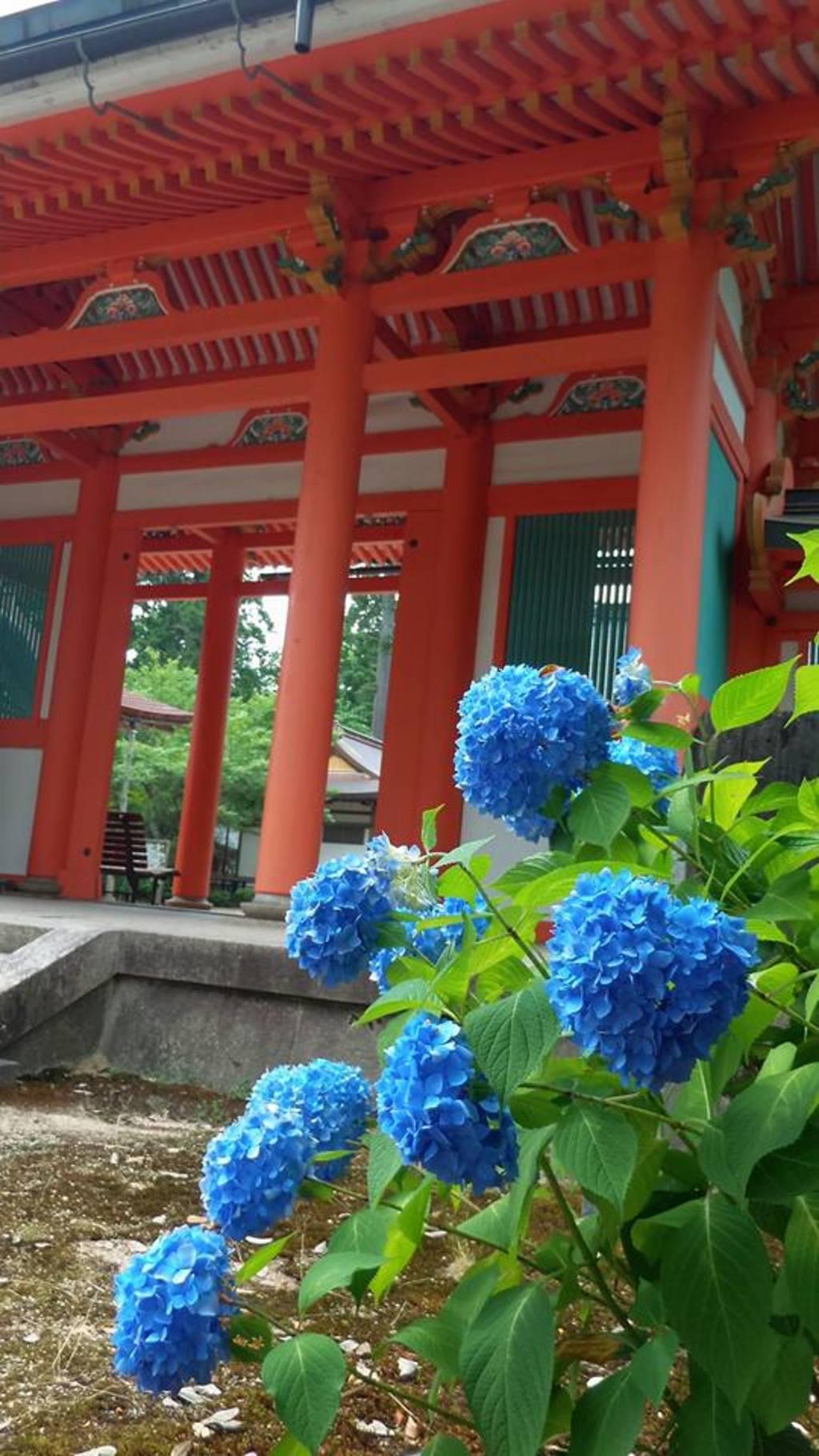 出石神社の山門(兵庫県国府駅)