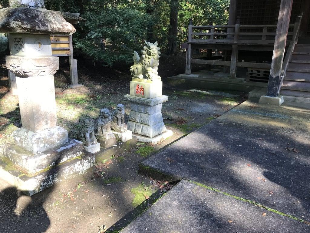 龜山神社の狛犬