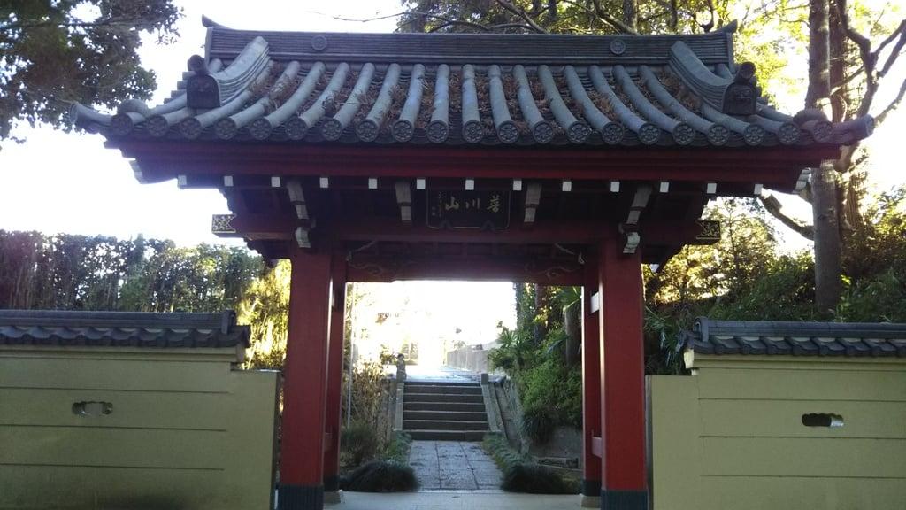 定善寺の山門