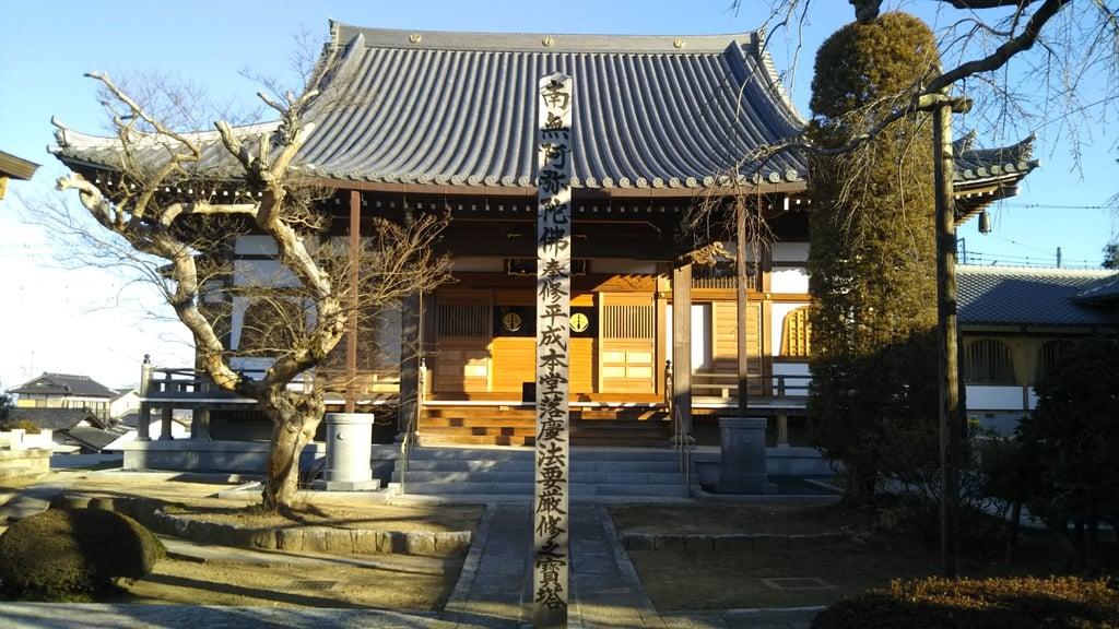 定善寺の本殿