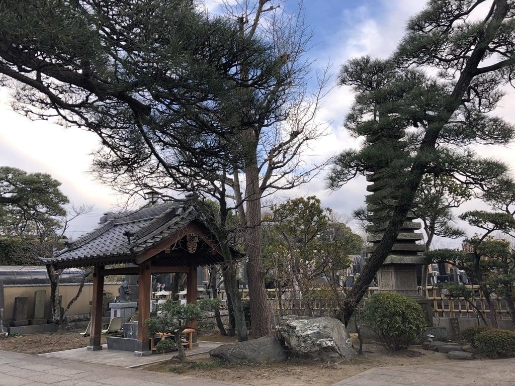 妙勝寺の庭園