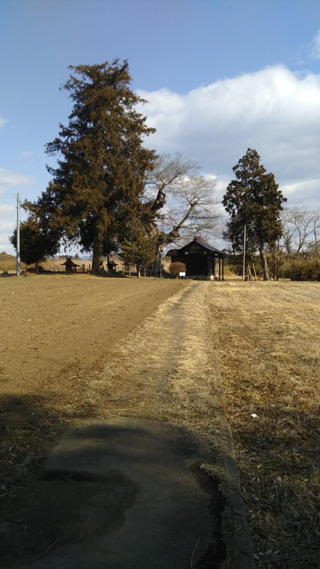 桂木稲荷神社の建物その他