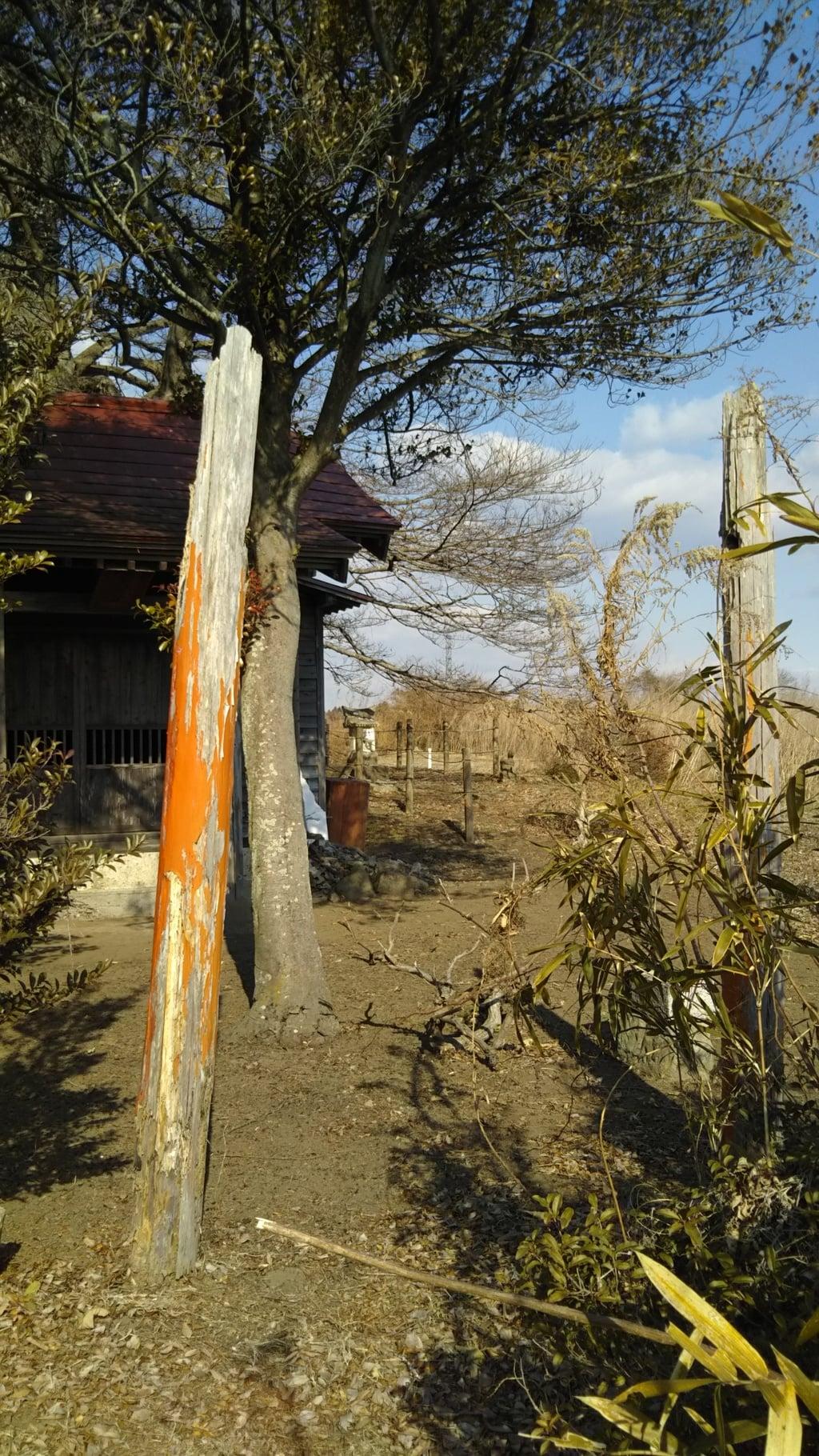 桂木稲荷神社の鳥居