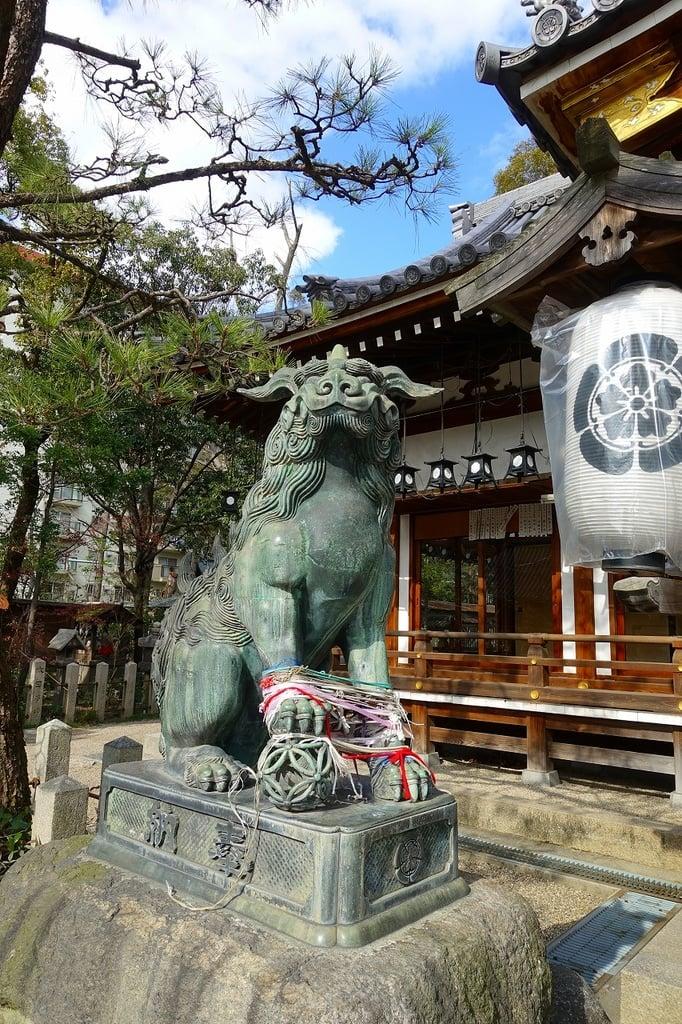 杭全神社の狛犬(大阪府平野(JR)駅)