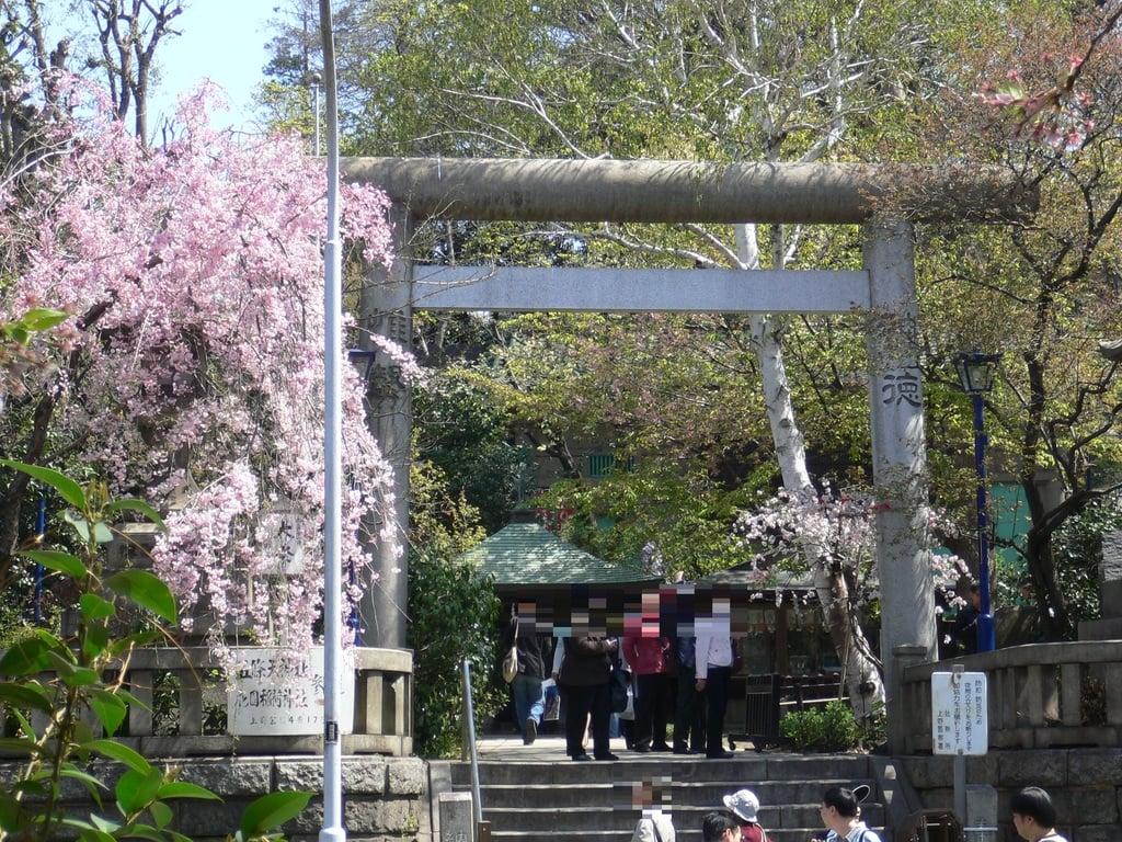 五條天神社の鳥居
