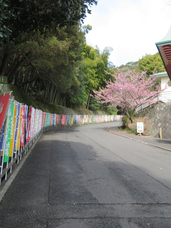 身代り不動尊(大明王院)(静岡県)