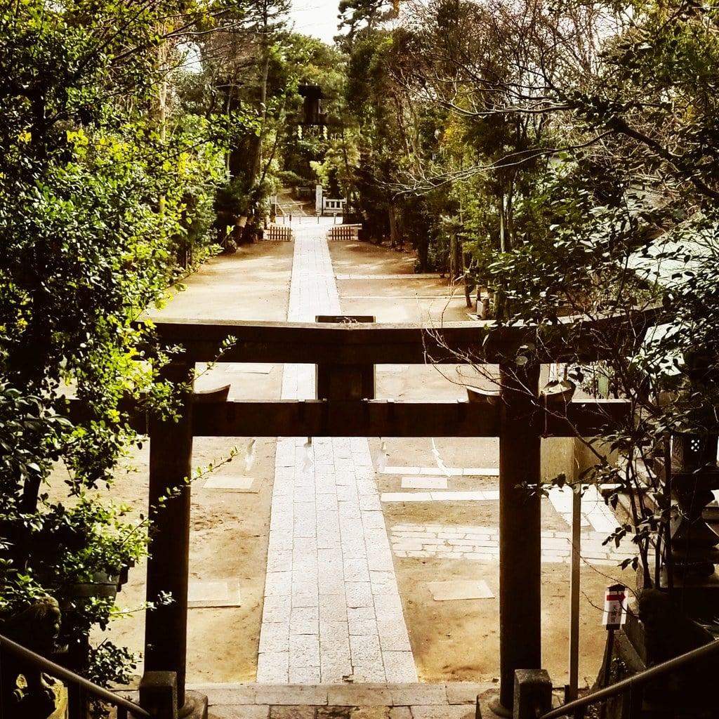 篠崎浅間神社の鳥居