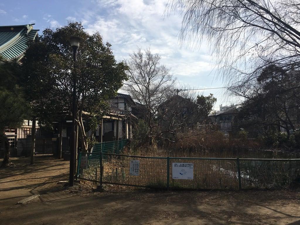 稲荷神社の庭園