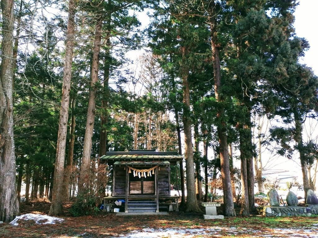 野中薬師神社の本殿