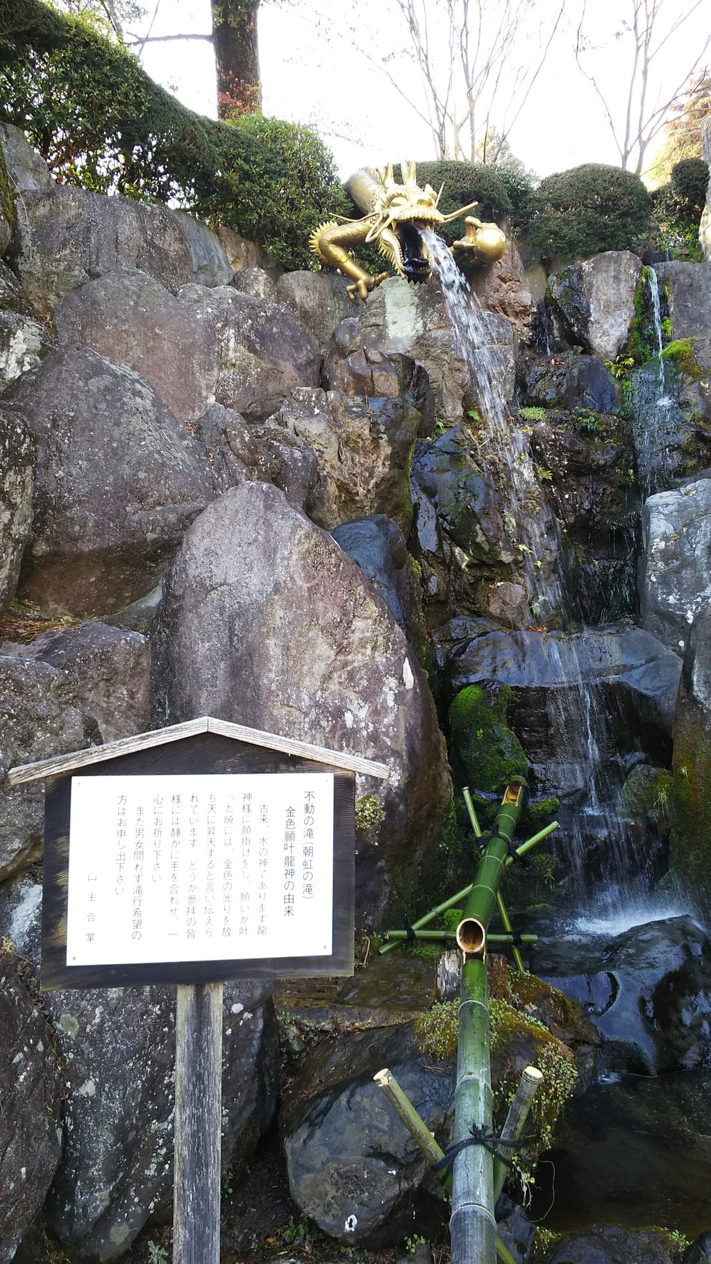 金乗院(那須波切不動尊) の庭園