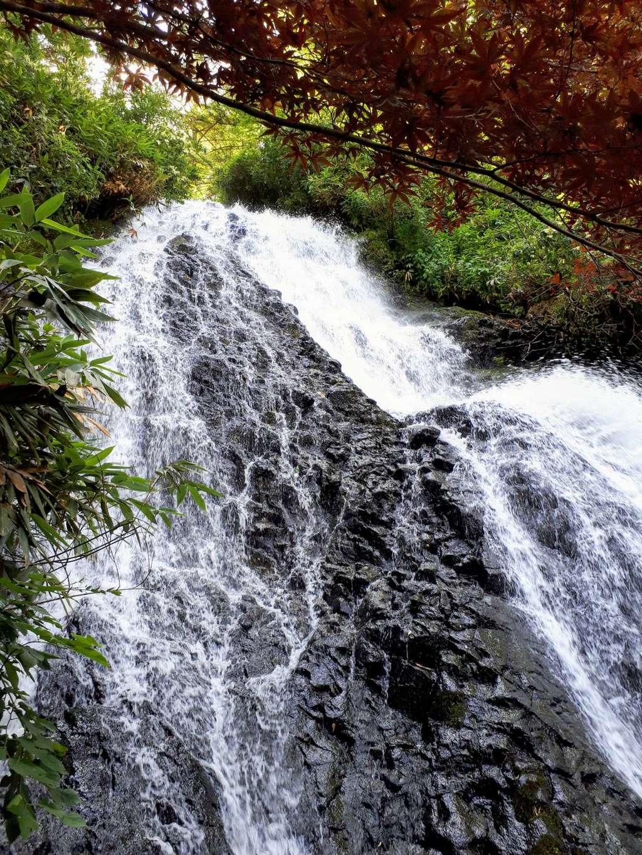 七滝神社の自然
