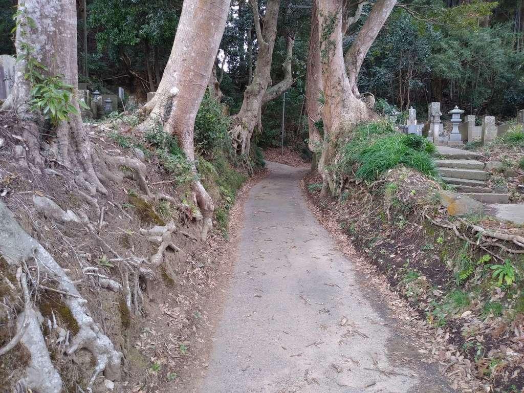 諏訪神社の周辺(茨城県大洋駅)