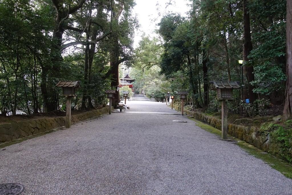 石上神宮の景色(奈良県天理駅)