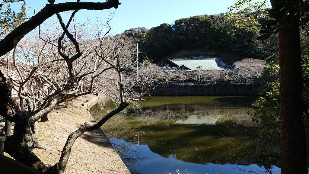 安房神社(千葉県館山駅)