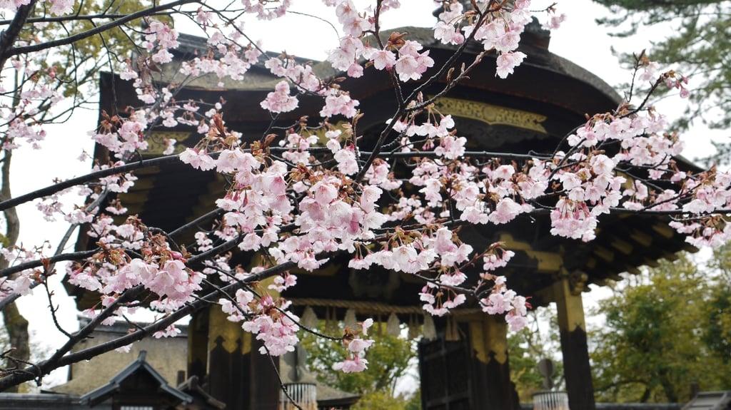 豊国神社の建物その他