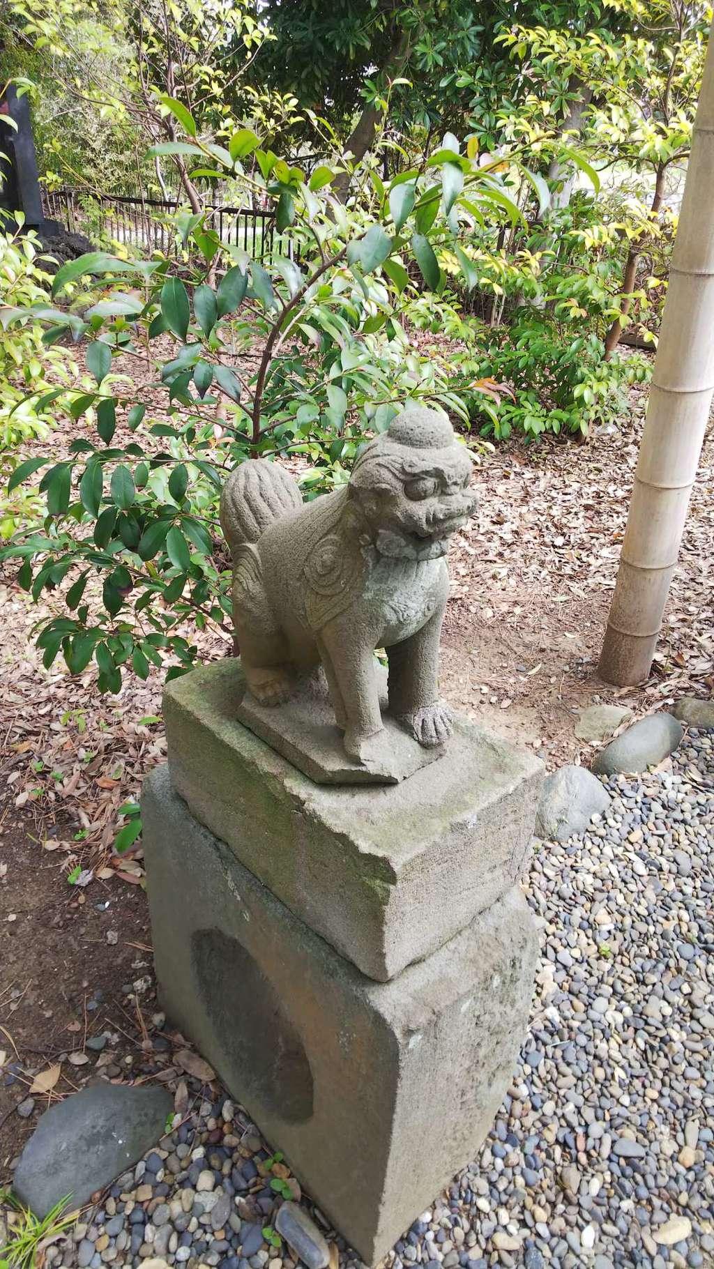 菊田神社の狛犬
