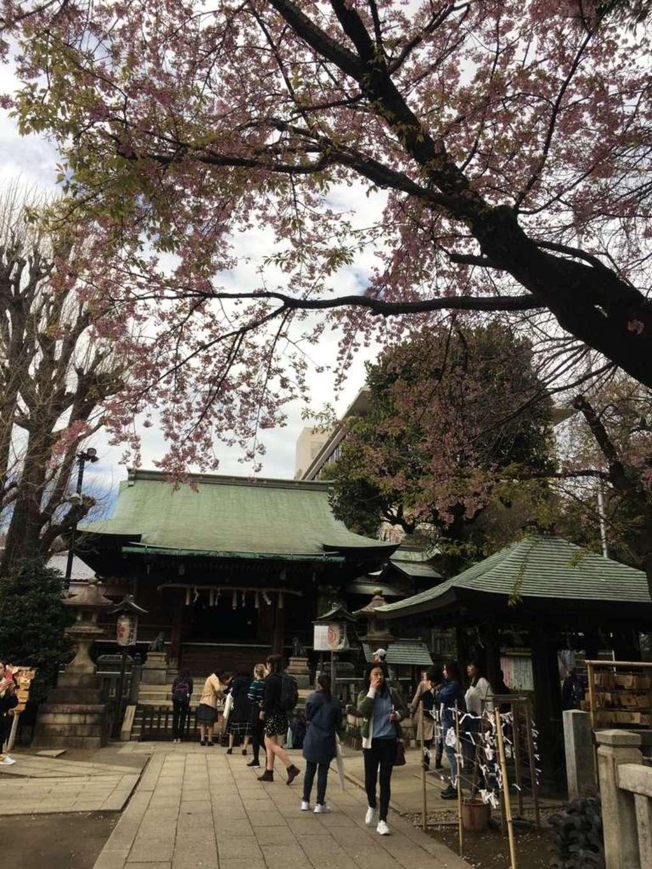 五條天神社の建物その他