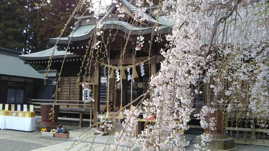 常陸第三宮 吉田神社の本殿(茨城県水戸駅)