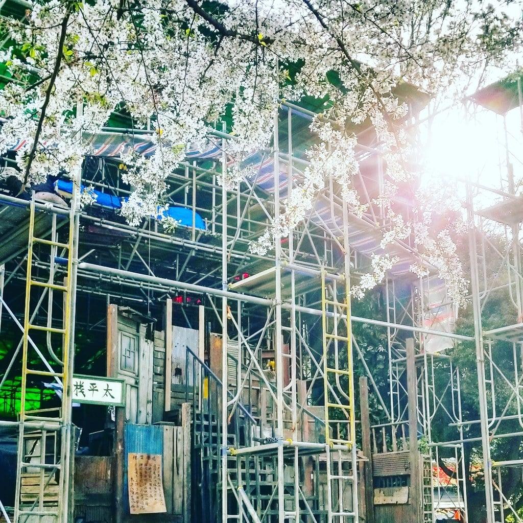 花園神社の建物その他(東京都新宿三丁目駅)