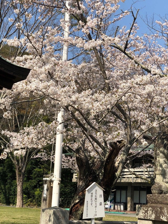 静岡県護国神社(静岡県長沼駅)