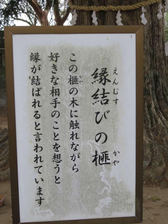 定林寺の歴史