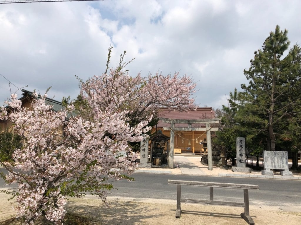 万九千神社の自然