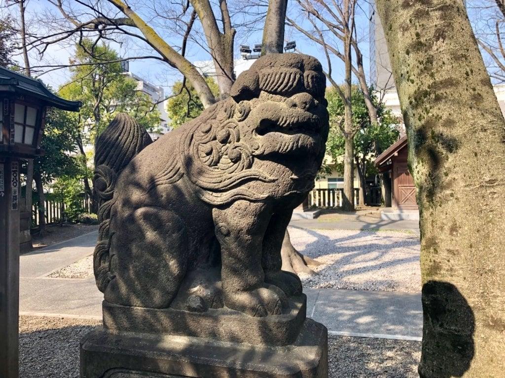 富岡八幡宮の狛犬
