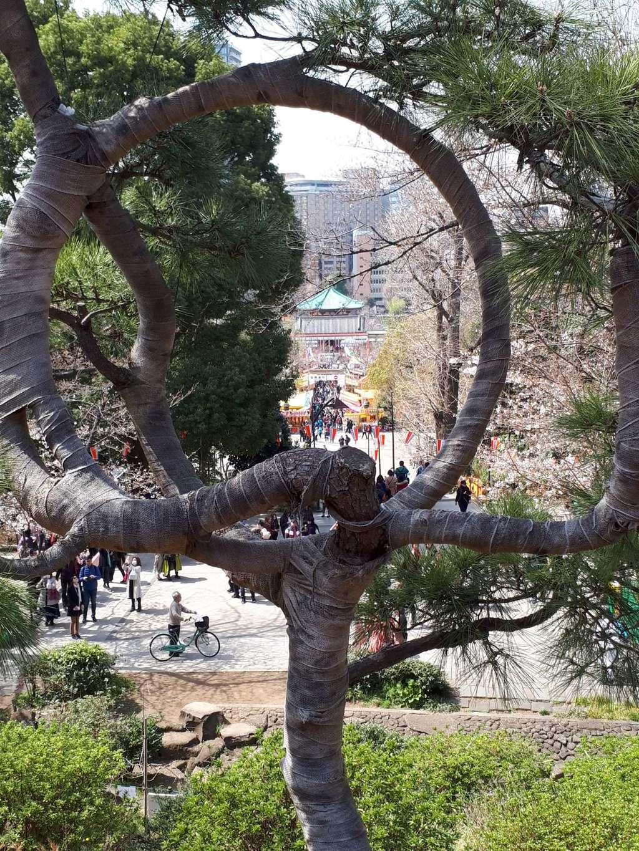 清水観音堂の庭園