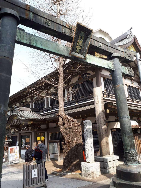 湯島天満宮の鳥居(東京都湯島駅)
