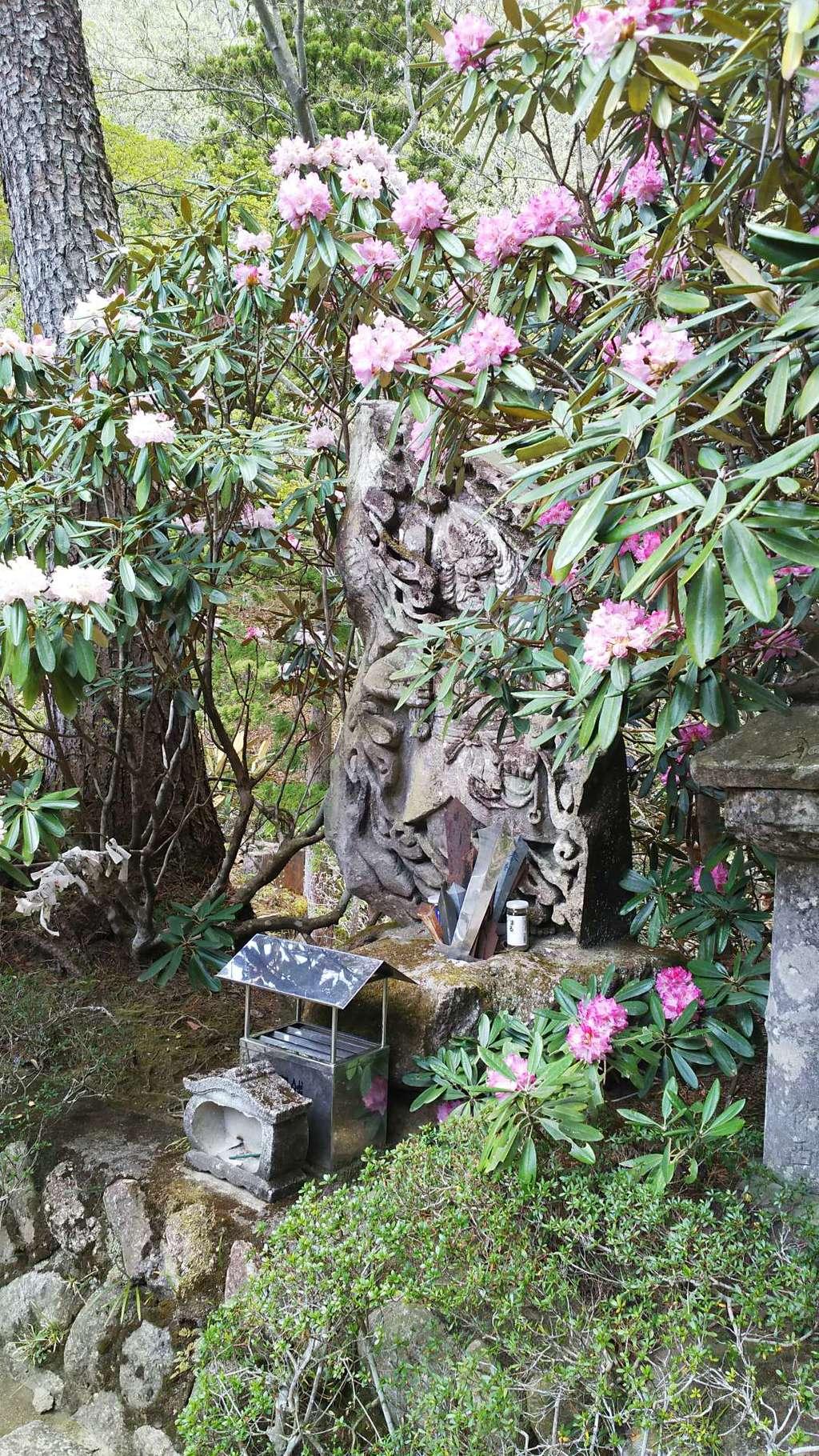 徳善院明王密寺の仏像