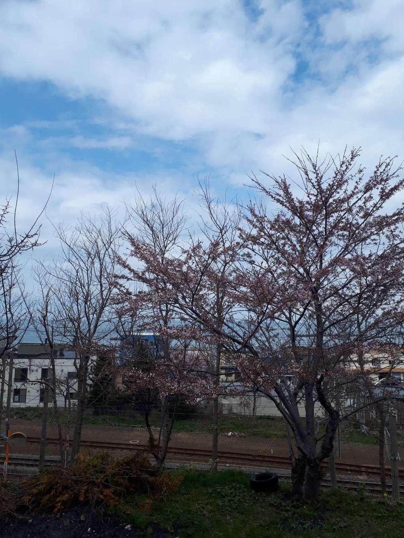 豊足神社(北海道)