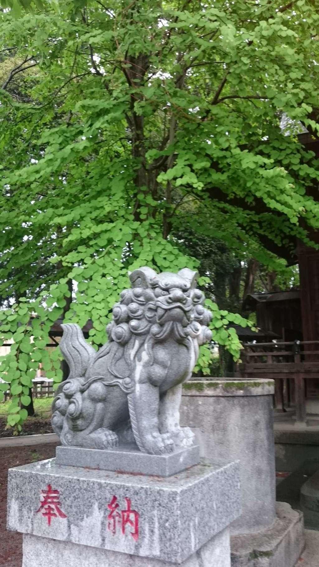 加茂別雷神社の狛犬
