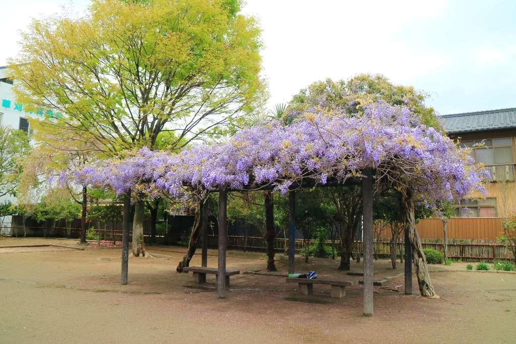 仙台東照宮の庭園