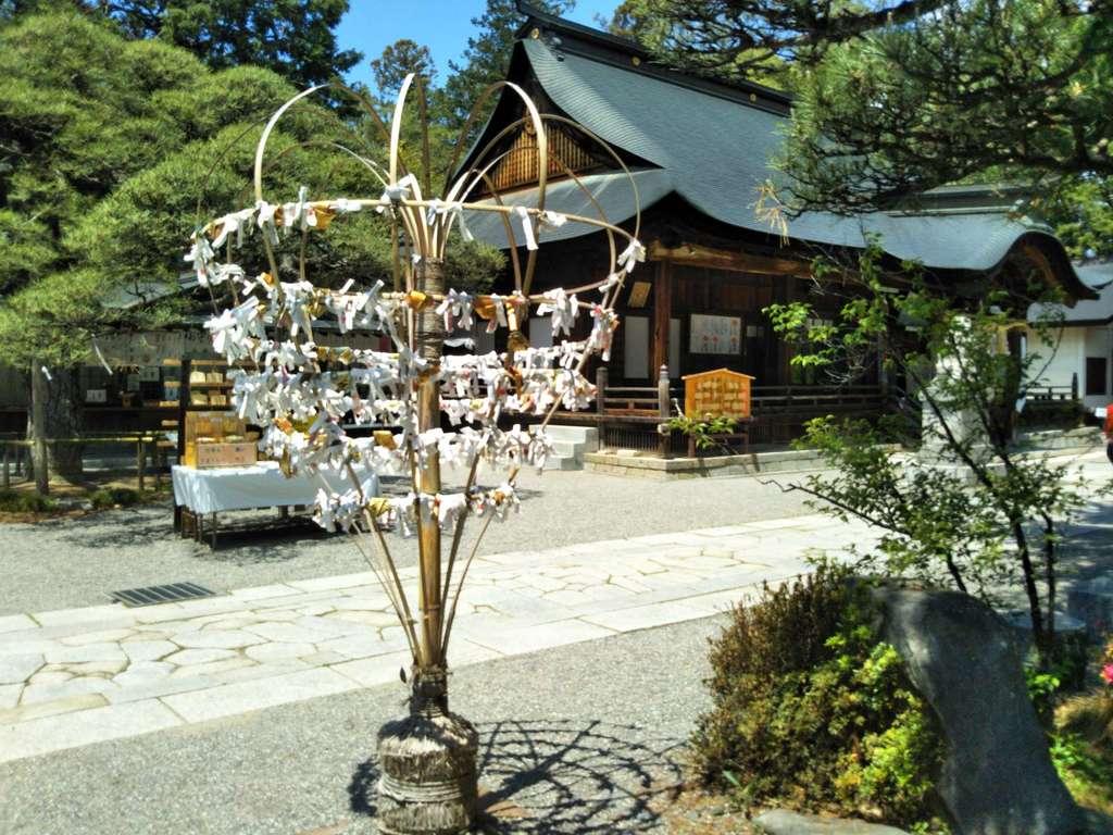 浅間神社のおみくじ