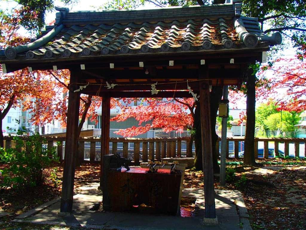 本土神社の手水