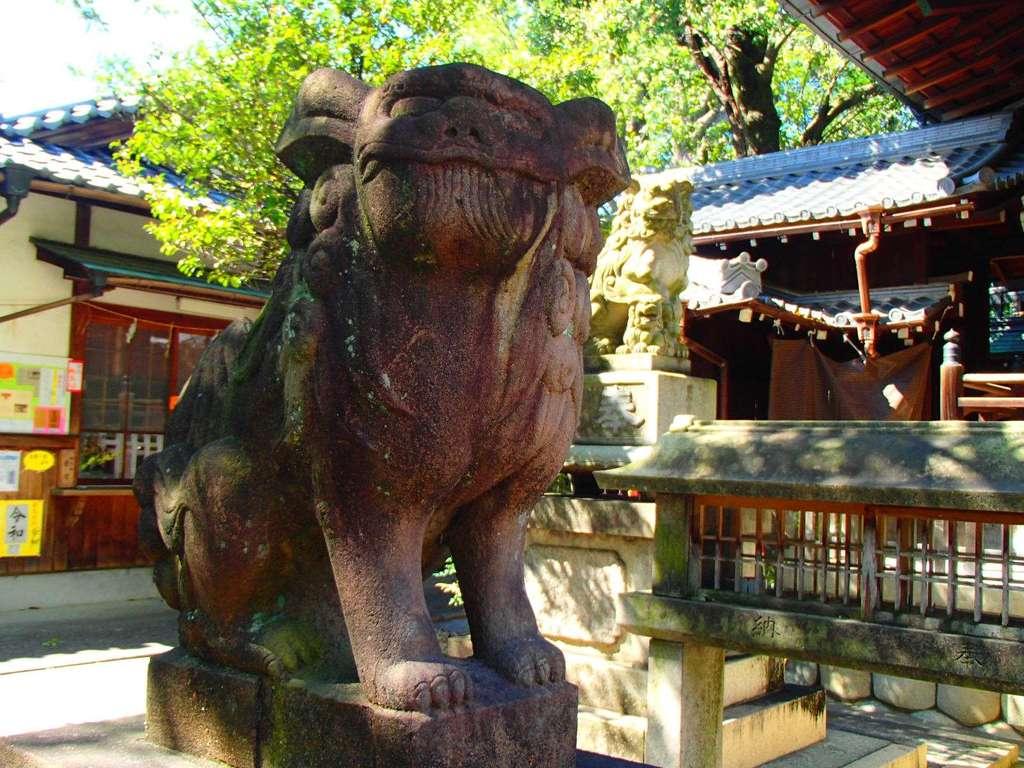 本土神社の狛犬