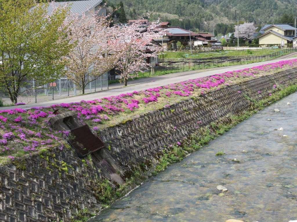 飛騨一宮水無神社の周辺