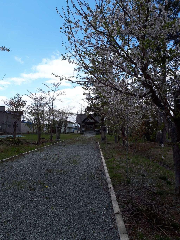 新篠津神社の建物その他