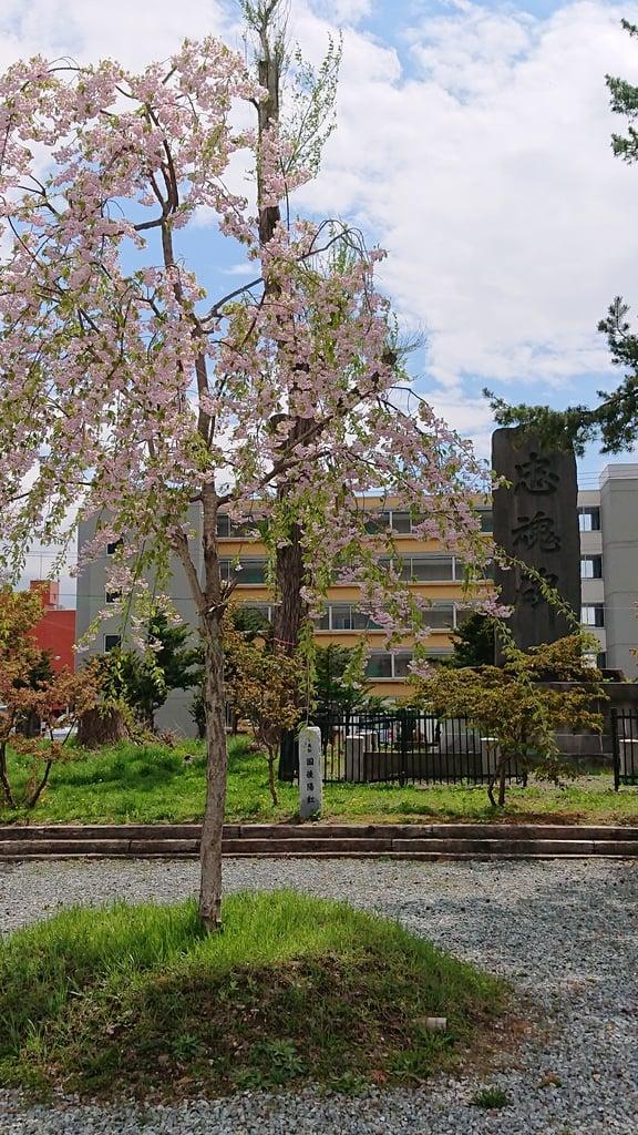 空知神社の庭園