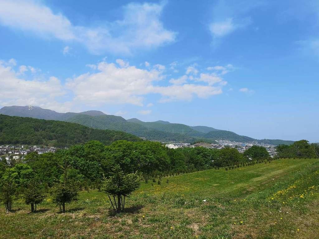 札幌御嶽神社の自然